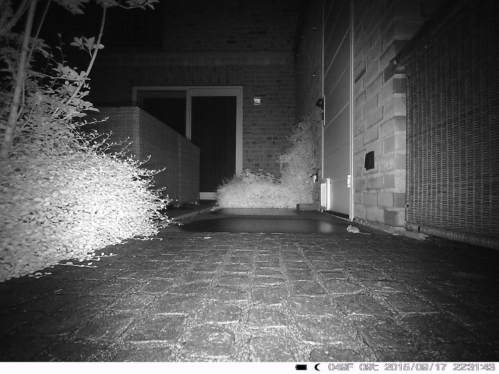camera gsm surveillance nuit