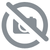 affichette site sous videoprotection